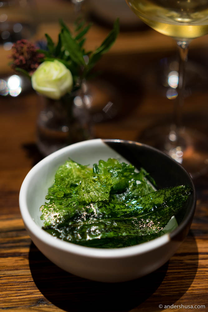 Cow's milk tofu, grilled leaves of mustard and pakchi farang