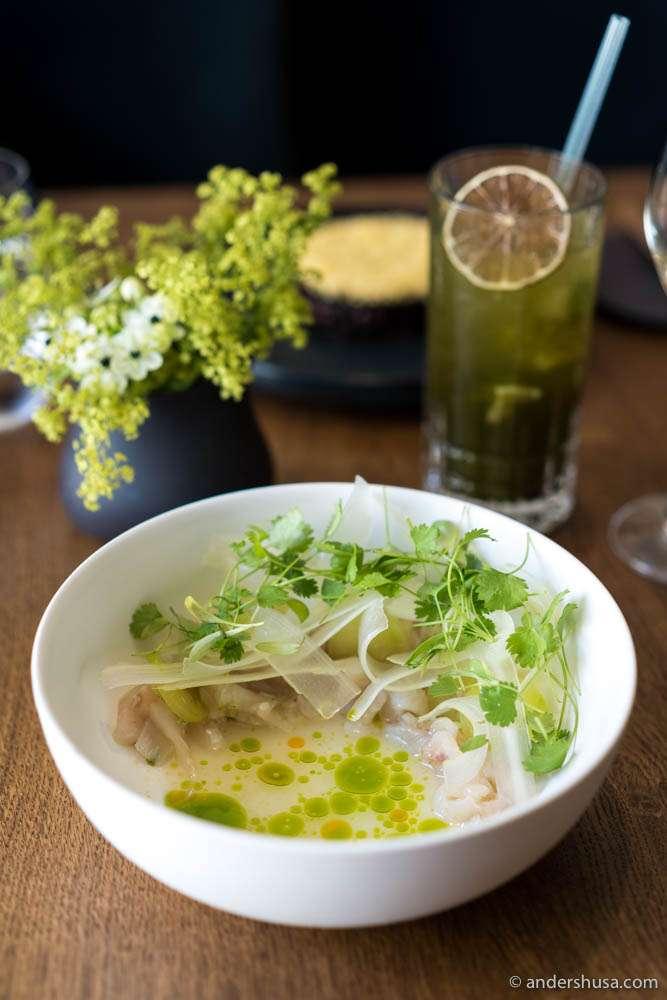 Seabass tiradito, tiger's milk & cilantro