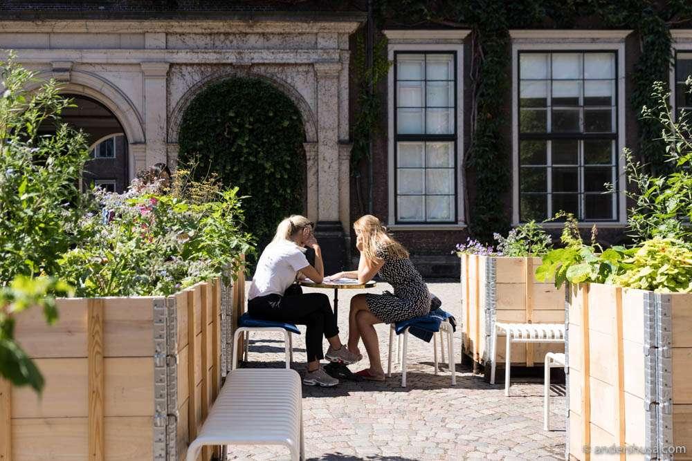 Cozy in the gardens of Apollo Bar