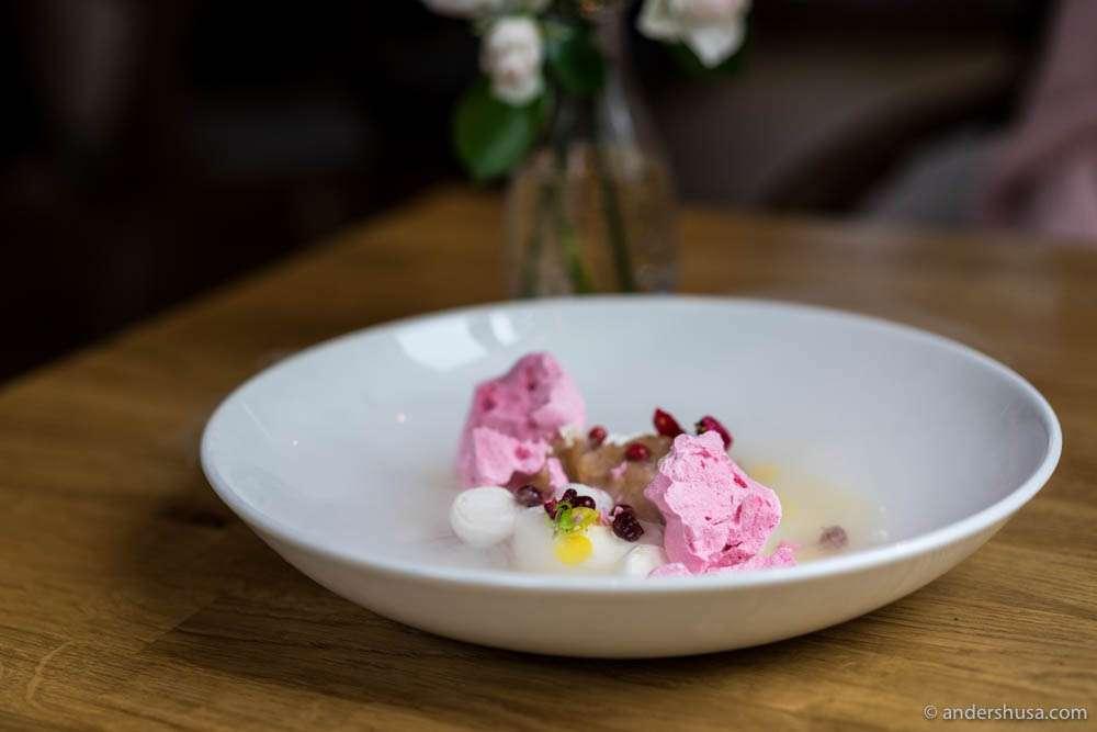 Cranberry iceberg, baked cinnamon-honey apple, yogurt cream, and frozen cranberry mousse