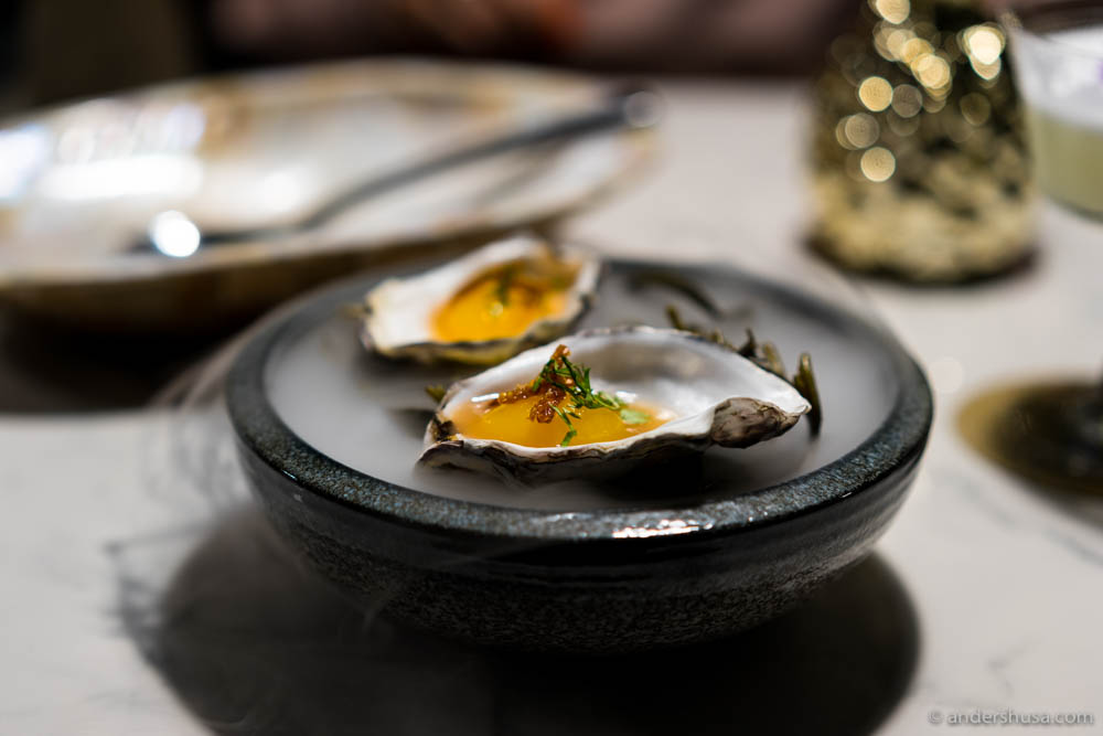Tropical oyster – white peach jus, mango spere & dry tropics