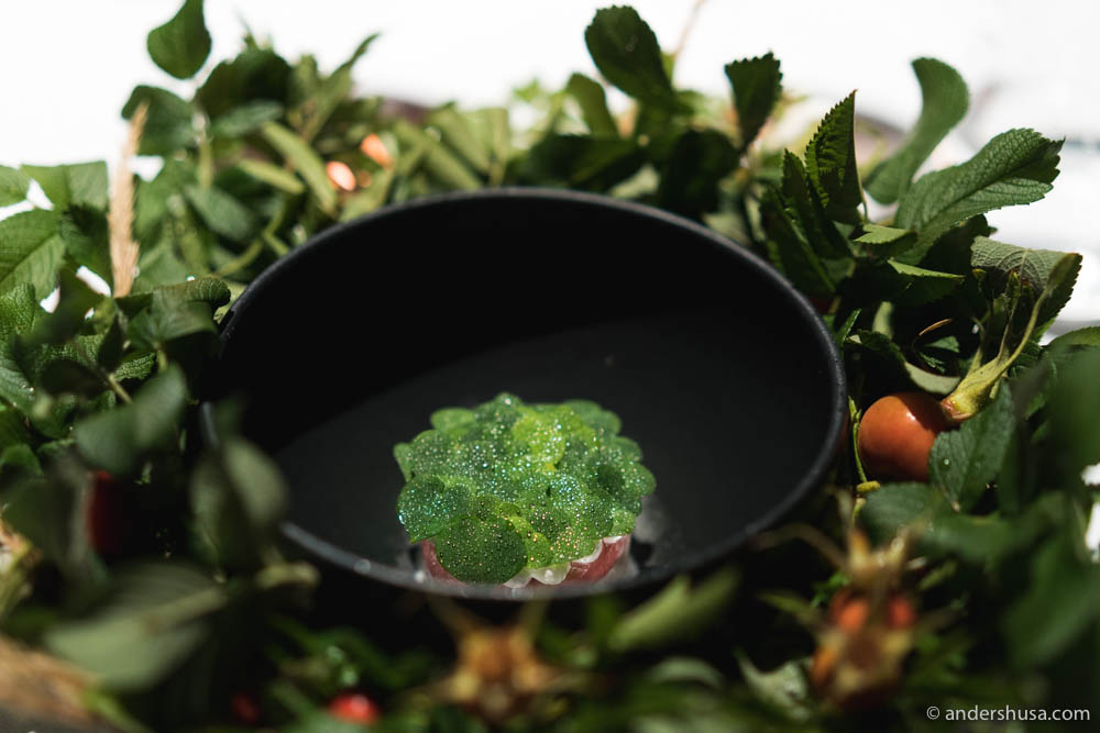 Beautiful and delicious new dish at Maaemo.