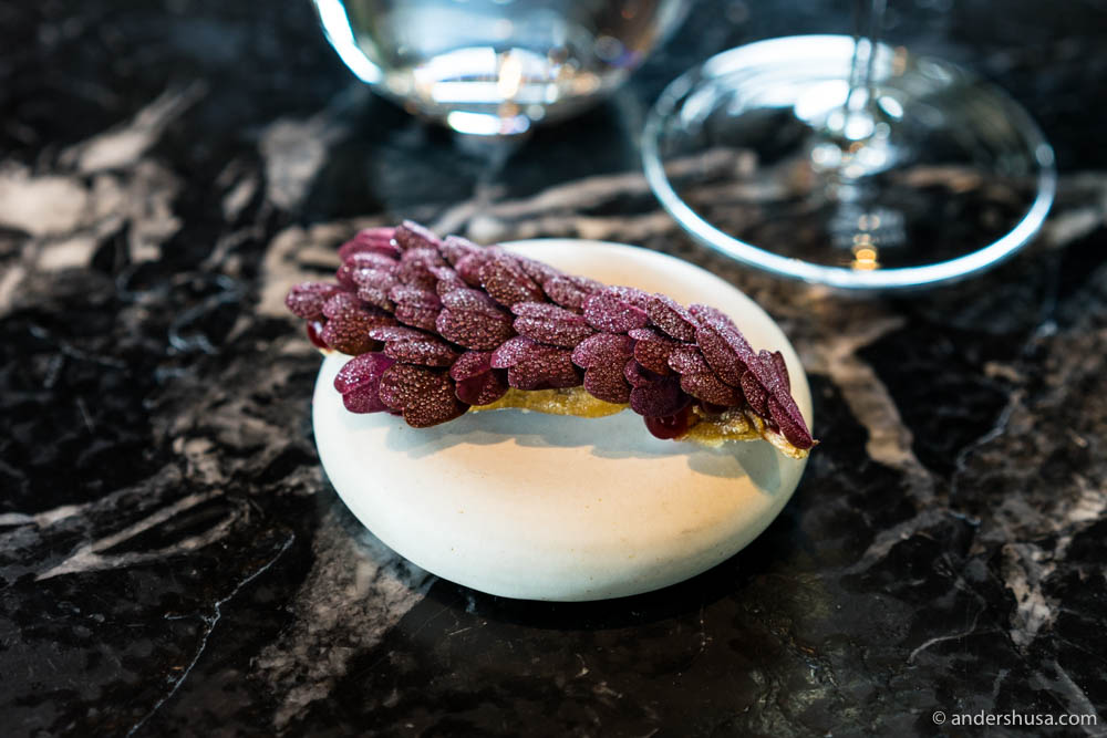 From visit no. 6/10 to Maaemo