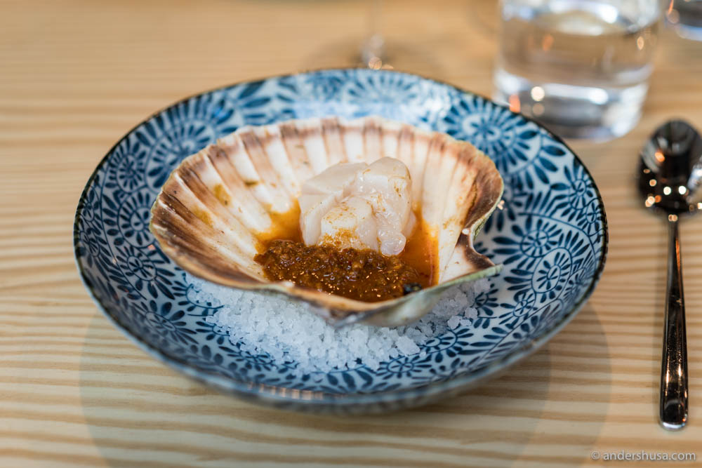 Scallops with XO sauce