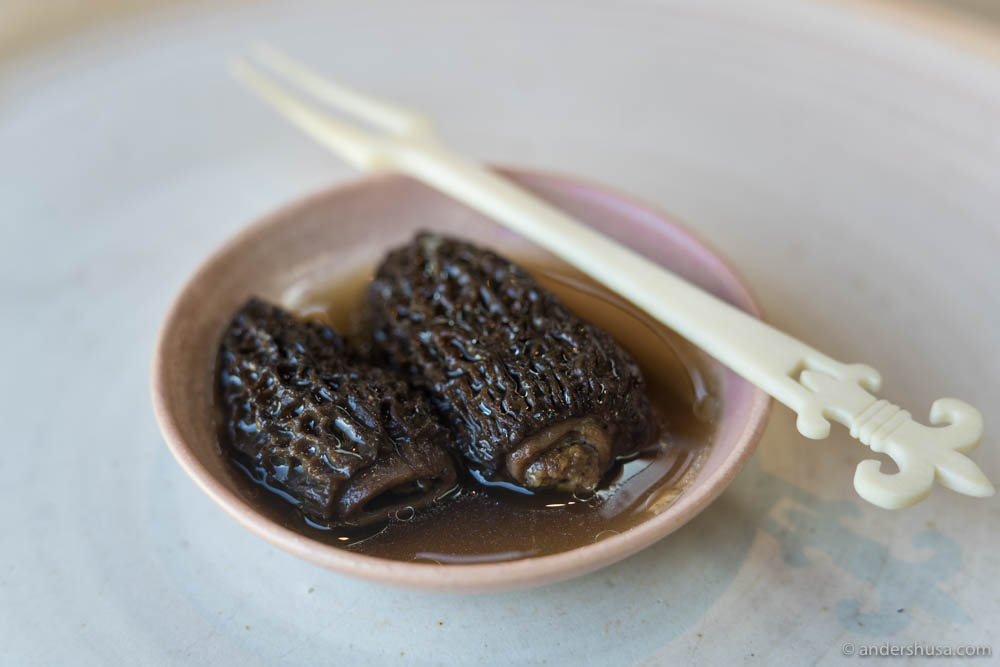 Preserved morels from spring, stuffed with a brown butter and beech nut paste, bathing in a maitake broth