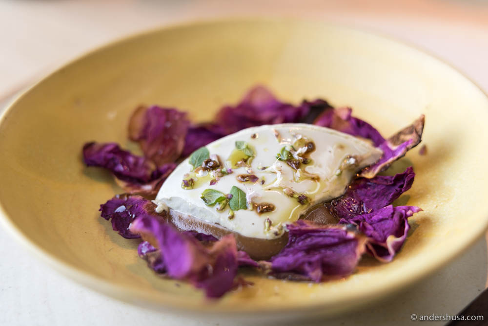 Pumpkin seed tofu, walnut mole, and grilled rose petals
