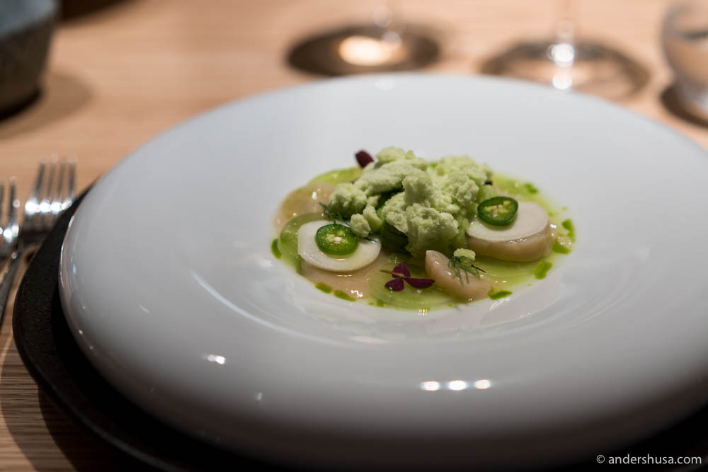 Raw-marinated scallops with avocado, pickled kohlrabi, cucumber & cucumber granita
