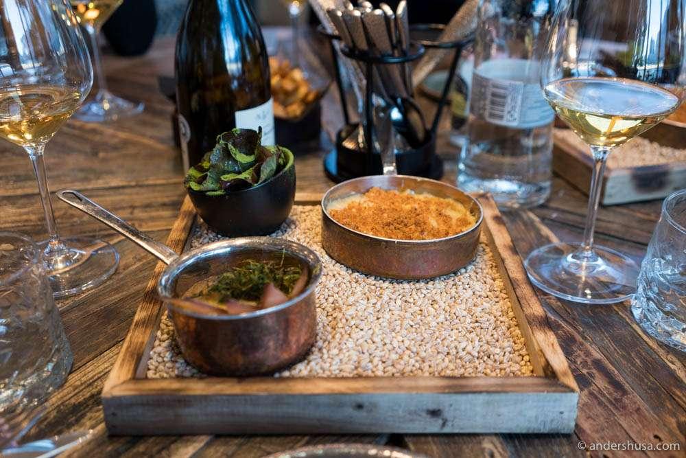 Porcini stroganoff, oak leaf lettuce & potato mash