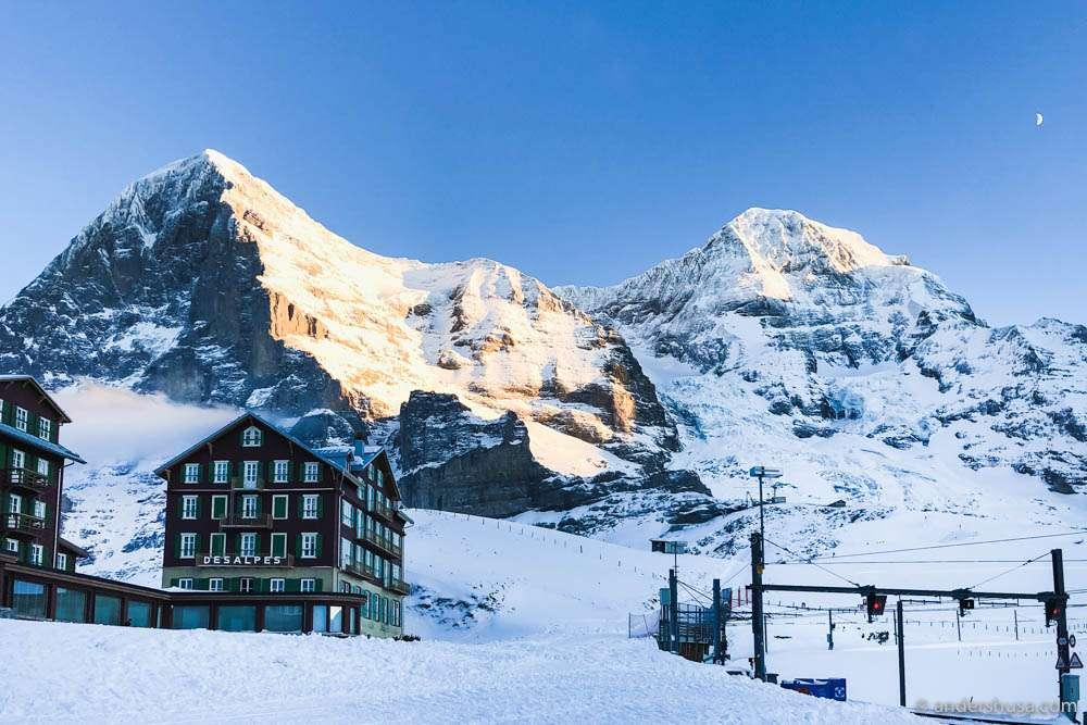 Klein Scheidegg – halfway to the Jungfraujoch. Photo: Kaitlin Orr (http://www.carnivorr.com)