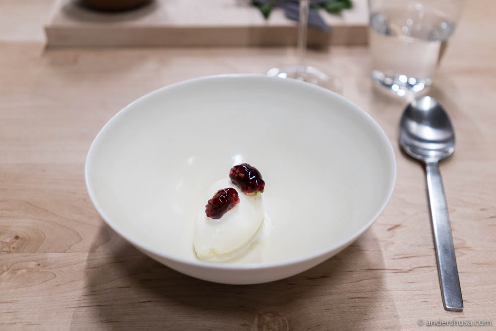 Salted milk ice cream with preserved raspberries at no. 4 – Ernst in Berlin, Germany.