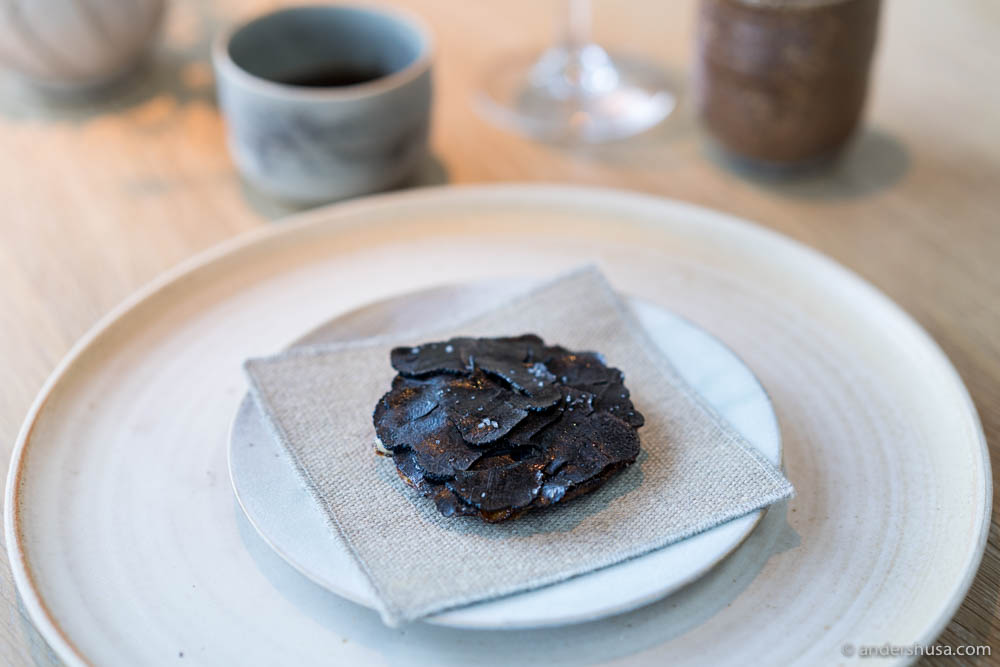 Caramelized milk skin, cheese, and summer truffles at no. 7 – Noma in Copenhagen, Denmark.