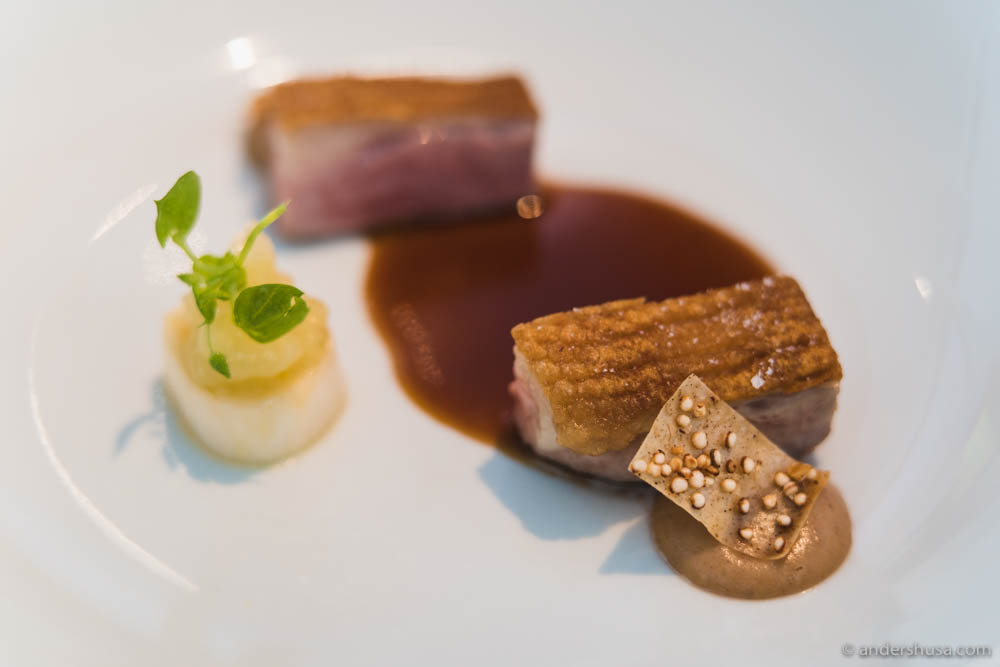 Duck breast, crispy skin with five spice, apple and leek, jus of duck feet & wafer cream