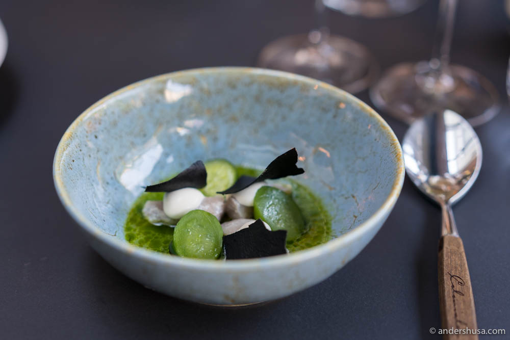 Mackerel, cucumbers from Hanasand, sour cream from Røros, squid ink chips, chives oil, cucumber juice & lemon