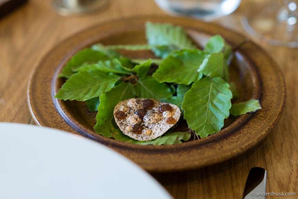 Rye crispbread, langoustine roe cream, langoustine gel, and leek ash