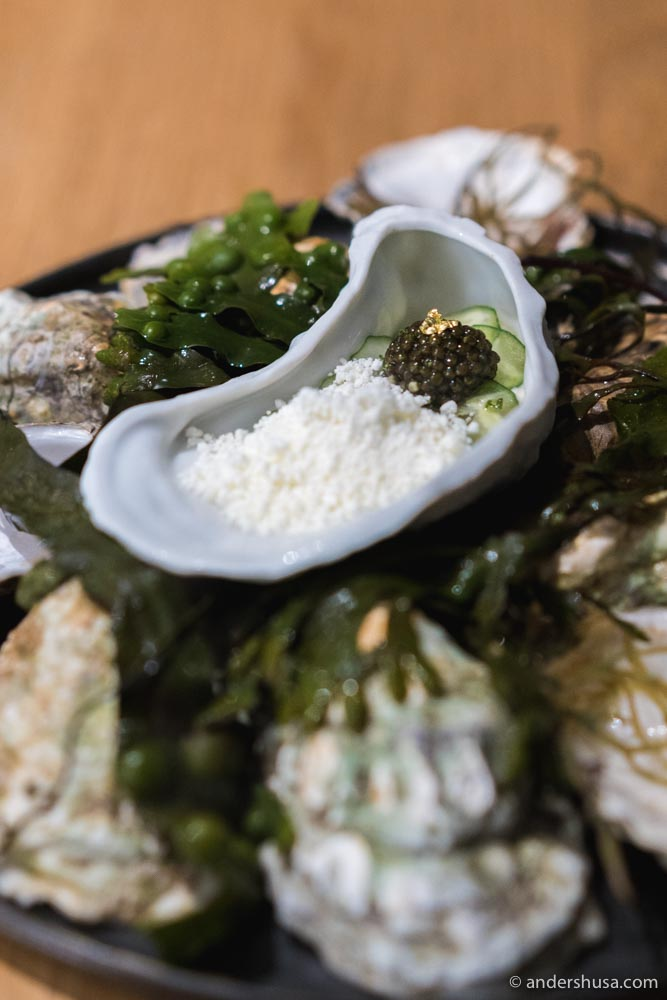 Gillardeau oyster, cucumber, yuzu kosho, mint, crème fraîche & caviar