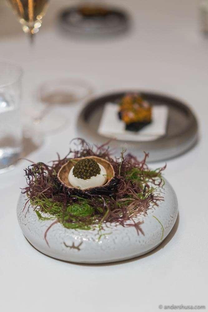 Spot prawn tartare, mussel cloud & Royal Schrenckii caviar.