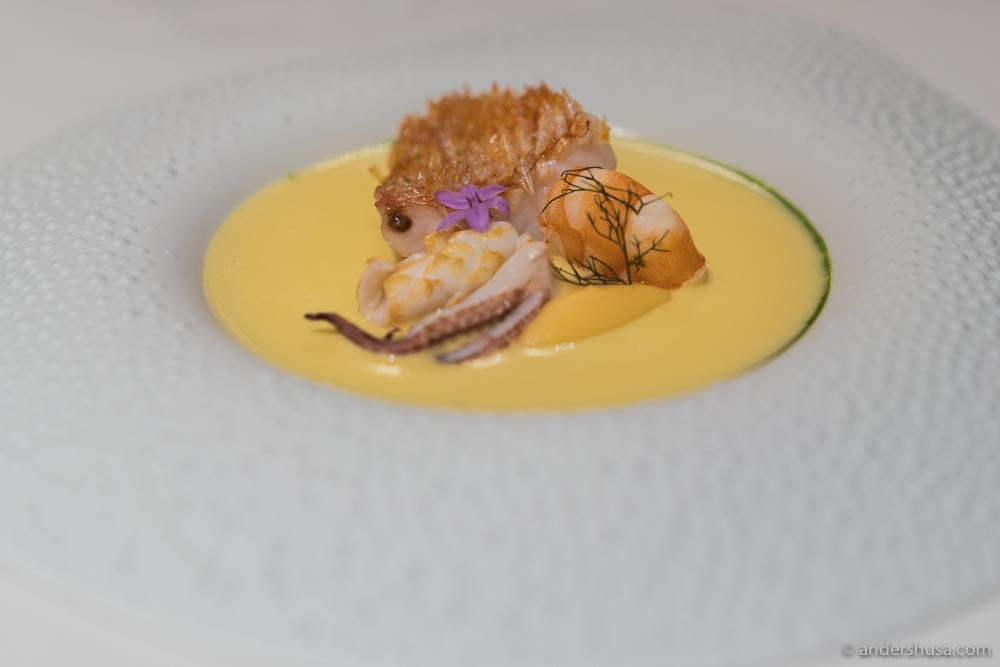 Crispy scaled kinki fish, squid, rutabaga & Iranian saffron.