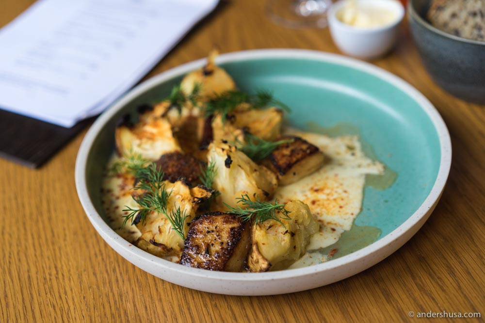 Fried scallops, caramelized celeriac, gooseberries, and dill.