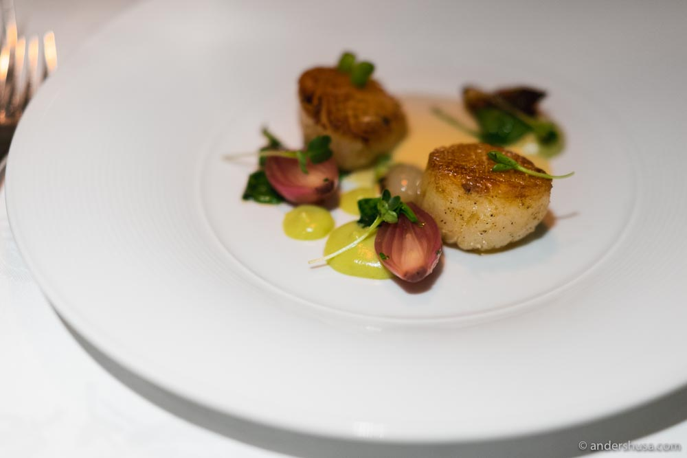 Scallops, pickled onions, cauliflower & tarragon purée.