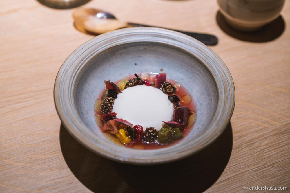 Sheep's milk yogurt, dried and fermented fruits, white currant and pine. Our favorite Noma 2.0 dessert so far!