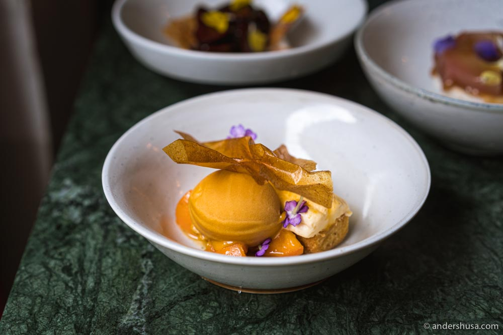 Roasted apricot sorbet with almond financier.