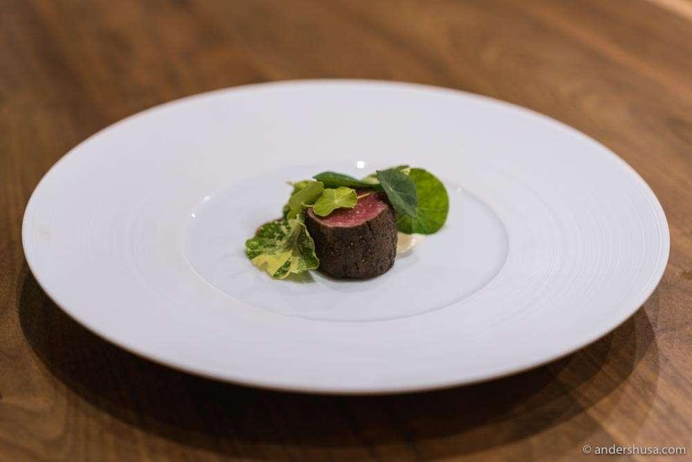 Beef tenderloin with potato dauphinoise, bordelaise sauce, and nasturtiums.