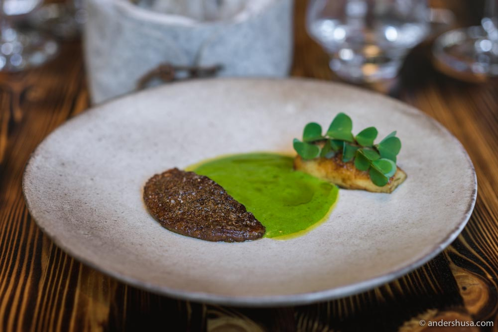 Porcini mushroom and Spanish chervil