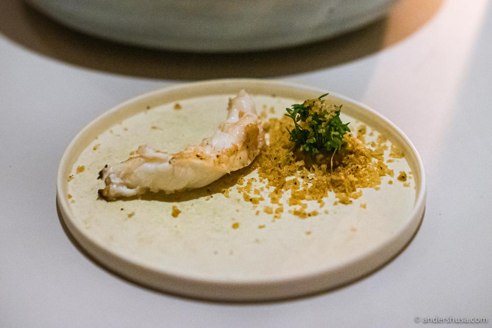 Langoustine from Midtsund with langoustine butter, ceps, and cress.