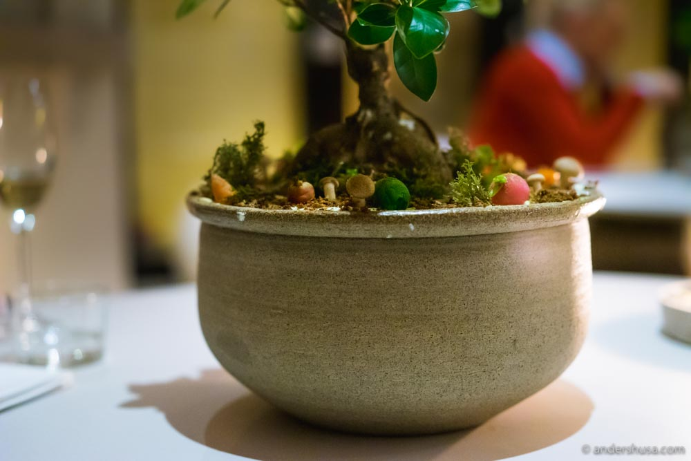 """""""The tree."""" Garlic cream, fried moss, mushrooms, radishes and fake """"soil"""" made from rye bread."""