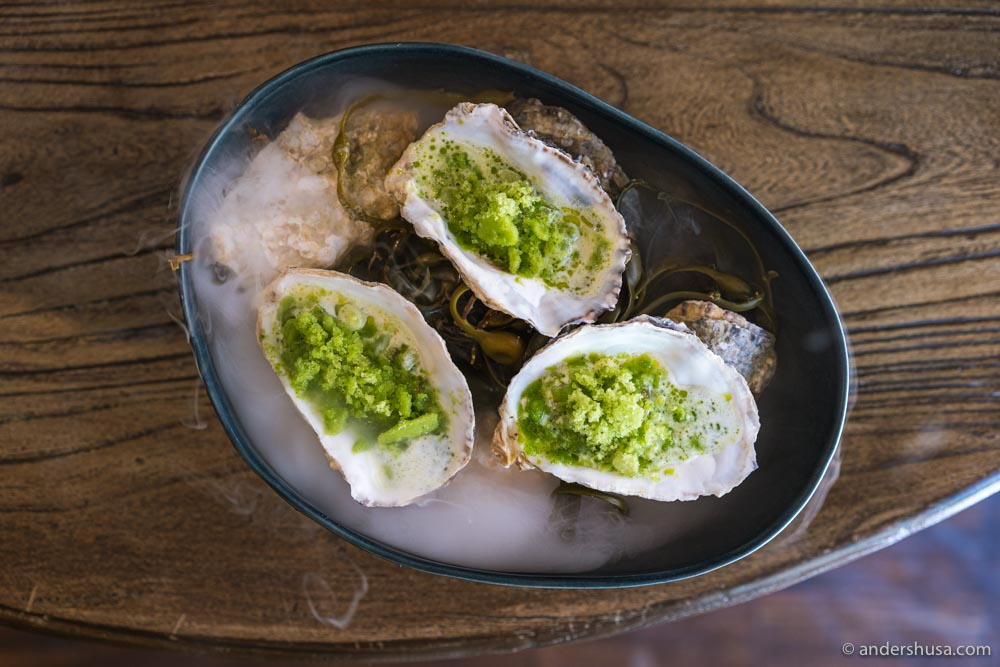Pacific oysters (invasive species) in a chawanmushi egg custard with cucumbers, goat buttermilk, and dill oil.