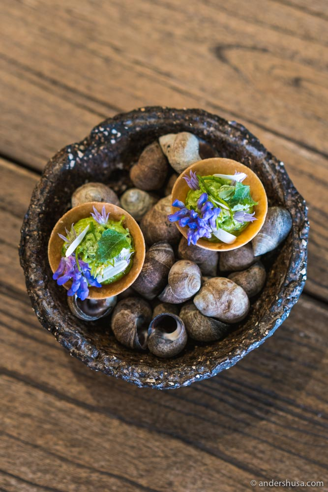 Tart of sea snails, bread emulsion with parsley and garlic, and wild herbs.