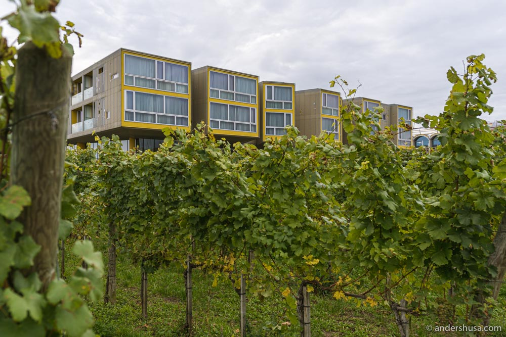 The Loisium Langenlois Wine & Spa Hotel is located in the middle of the vineyards in Kamptal.