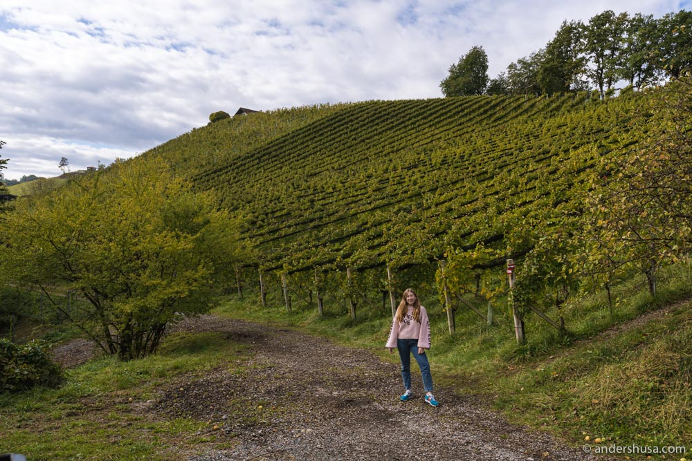 Kaitlin fell in love with the rolling hills of Styria.