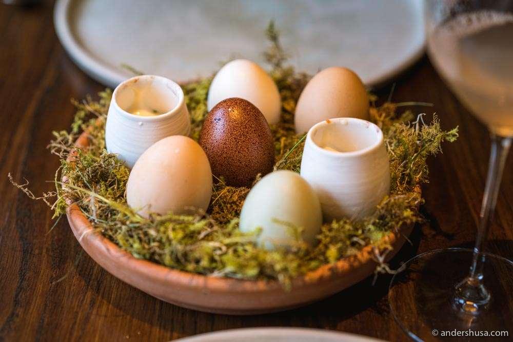 Egg yolk marinated in sake, raw sea urchin, parsley oil, and a sauce of egg white foam.